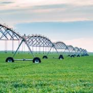drip-irrigation-system-in-field-WCSBG7J